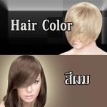 LL สีผม